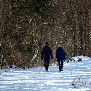 sfaturi-sanatate-iarna-plimbare-iarna