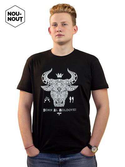 mesaje-uaiuai-tricouri-moldovenesti