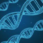 Cancerul este cresterea necontrolata a unui grup de celule 'rele'; incepe cu ADN-ul, afectand genele care regleaza divizarea unei celule si duplicarea sa.