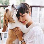 Terapia cu animale ofera confort persoanelor care sunt triste, care sufera sau poate au nevoie de un prieten.