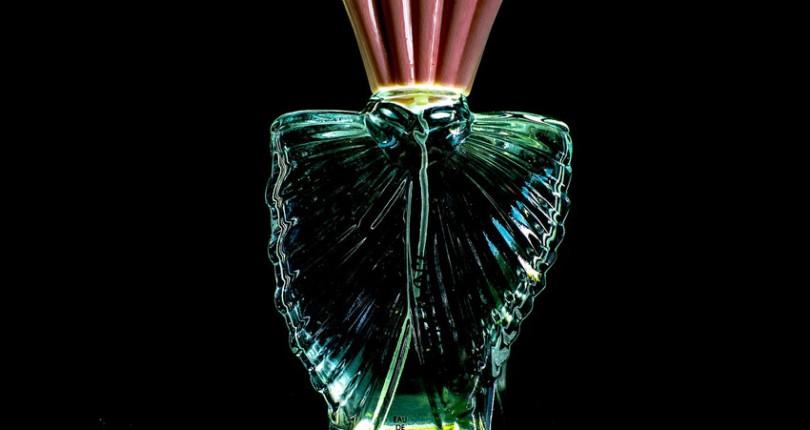 Despre parfumuri – Tipuri de parfumuri, Plante esentiale pentru parfumuri (II)