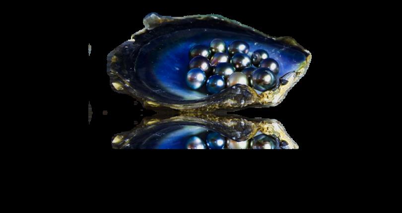 Ce Trebuie sa Stim despre Perle? O Scurta Introducere in Lumea Lor (I)