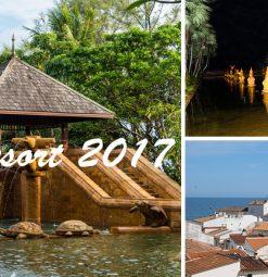 Tendinte resort 2017