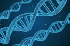 Sanatate ADN